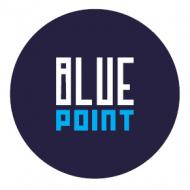 Bluepoint sh.p.k.